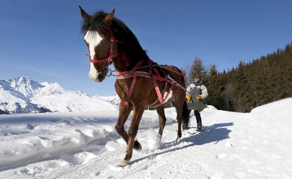 ski-joering-1